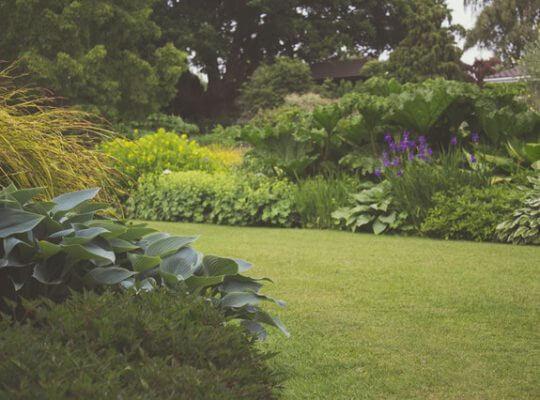 Jak urządzić mały przydomowy ogródek?